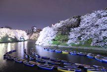 Japan Tokyo Sightseen