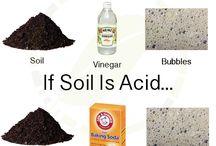 Soil check