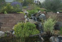 Water Features Through Walls / Sometimes uneven yards have retaining walls constructed and while those walls are functional, they may not be too attractive! Why not get creative and run a water feature through those walls?  A drab wall can become the focal point of a landscape! They can be as simple as a small pondless waterfall or as complex and elegant as a 50' stream running down a hillside and ending in a koi pond! Check out www.rmwaterscape.com for more photos and water feature ideas.