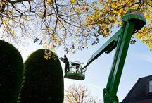 Tuinonderhoud in Wassenaar / In deze tuin hebben wij alle coniferen van circa 10 meter hoog gesnoeid met een hoogwerker. Door Garden Royaal. www.gardenroyaal.nl
