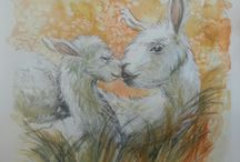 Illustration -The Knock kneed Alpaca