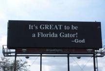 Everything Gator! / by Andrea Azalia