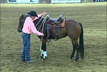 DownUnder Horsemanship - Clinton Anderson / by Sandra Gregory