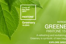 Pantone 2017 Color of the Year--Greenery / Greenery is a zesty, fresh yellow-green hue that evokes the first days of Spring when nature's greens revive, restore & renew.