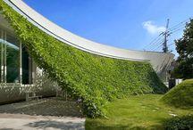 Verde verticale, giardini