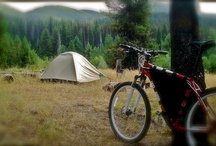 Bike Camping / Bike camping and using a bivy tent while Bicycle touring to see the world.