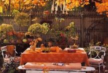 Fall Decor/Food/Fun