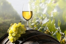 Hungarian wines - Magyar bor