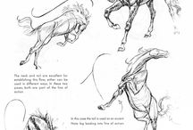 horse drawing tutorials