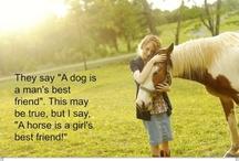 horsex