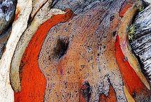 Ardoise et Orange