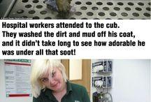 Thank u for helping them