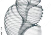 Radiology photos