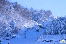 Visit Albania - Dardhe / A typical winter day in Dardhe, Albania.