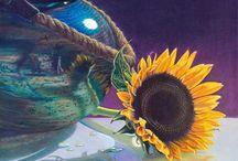 Sunflowers / Sunflowers!