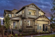 Single Family Luxury in Aurora / A luxurious two-story home with beautiful architectural elements.