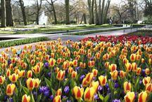 Antonella / Parco dei fiori