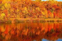 Mountain Lakes NJ / Your Real Estate Guide to Mountain Lakes