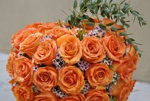 Cut Flowers / by Halleck Horticultural