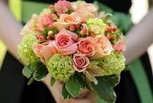 Wedding Flowers / by Cheryl Ellenburg