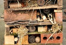 Outdoor bug houses