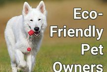 Eco-Friendly Pet Owners / Being kind to your pet and to the earth.