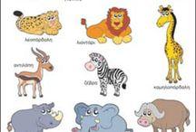 Ζώα Ζούγκλας