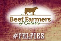 Beef Farmers of Ontario / Love your food? Meet your Canadian Beef farmers in Ontario.