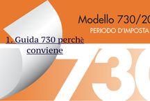 Compilazione Modulo 730 2015 - Periodo d'Imposta 2014 / La guida dell'Agenzia delle Entrate 2015 relativa alla compilazione del Modulo per la dichiarazione delle Imposte relative all anno 2014