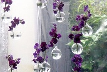 Fleurs / Composition bouquets jolis mignons