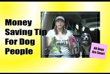 Frugal Living With Dogs