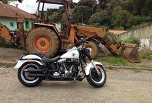 • Harley LOVE Davidson • / Paixão por motos