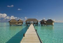 Maldives / Lush white sands, crystal clear waters and luxury private islands - The Maldives is a dream come true.