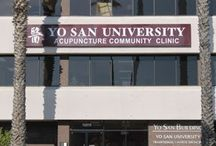 Yo San University / Yo San University, a nonprofit organization, educates students to become exceptional practitioners of Traditional Chinese Medicine and the Taoist healing arts. The school facilitates the development of students' spiritual and professional growth, and provides the community with an integrative medical care model and services.