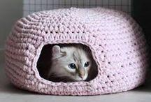 Cat Sleeping beds