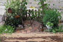 Miniature Gardens / by Ann Oas