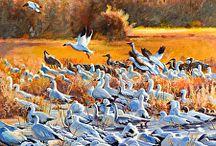 Bird Paintings by Artist Nancee Jean Busse / Bird Paintings by Artist Nancee Jean Busse