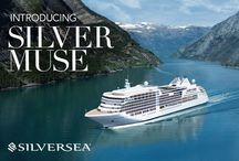 Introducing Silver Muse