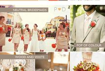 Color Palates  / by Andrea Freeman Events