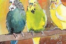 Aquarelle Oiseaux