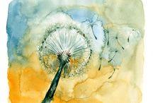Dandelions / by Marjie Lynn