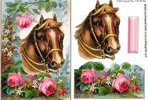 3D med heste