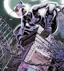 The New 52: Catwoman