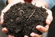 Topsoil Ideas