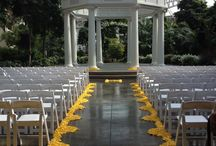 Yellow Rose Petals / A collection of decorations using yellow rose petals.
