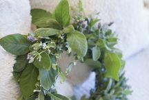 Cut Flowers and Herbs Wreaths / Cut Flowers and Herbs Wreaths / by Jacinda Buchanan