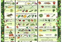 Great Gardening Guides and References