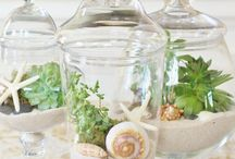 Cloches, Apothecary Jars, Terrariums
