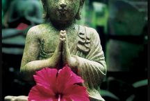 Buddha Figuren für Achtsamkeit und Meditation / Wunderbare Buddha Figuren für Geist und Seele