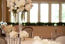 Wedding stuff / by Alejandra Castro